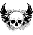 human skull decorative vector image