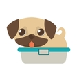 cute puppy little tongue out bathtub vector image