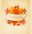 vintage nature autumn background with colorful vector image