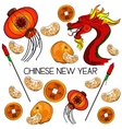 Traditional symbols of Chinese New Year vector image