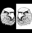 HAWK HEAD LINE vector image