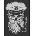 Captain Skull in a hat with a beard vector image