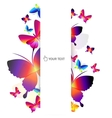 colorful butterfly background vector image
