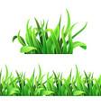 green grass horizontal seamless vector image vector image