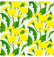 seamless floral pattern with dandelions vector image