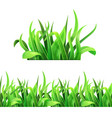 green grass horizontal seamless vector image