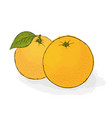 ripe juicy orange still-life from fruit hand vector image