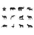 wild animal figures and shapes collection isolated vector image