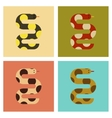 assembly flat icons nature wildlife snake vector image