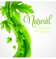 Natural background with green spring leaves vector image