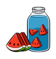 Watermelon Infuse Water Solid Line Art vector image