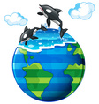 Two killer whales swimming in the sea vector image