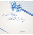 Baby boy announcement card of twins vector image vector image