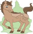 Pretty Pony vector image