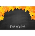 Autumn blackboard background with realistic maple vector image