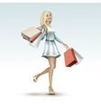 Blonde Woman Girl in Dress with Shopping Bags vector image