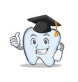 graduation tooth character cartoon style vector image