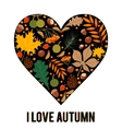 pattern with autumn leaves and berries vector image