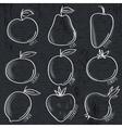 set of organic vegetable and fruit on blackboard vector image