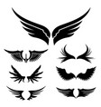 wings set design element vector image