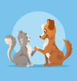 cat and dog characters best friends smiling vector image