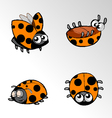 Insect Ladybug Cartoon vector image