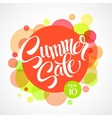 Summer sale Inscription against the bright vector image