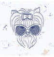 color sketch of elegant dog vector image