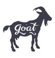 goat silhouette 003 vector image