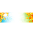 Autumn banner vector image