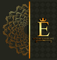 luxury and elegant e letter scroll royal image vector image