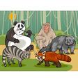 mammals animals cartoon vector image