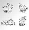Pig cartoon vector image