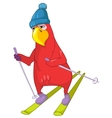Funny Parrot Skiing vector image