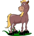 Cartoon Horse vector image