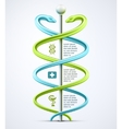 Caduceus medical infographic vector image