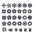 flower decorative icon vector image