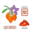 Superfood goji berries set in flat style vector image