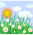 Sunny day vector image