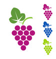 grape sign logo wine production of wines vector image