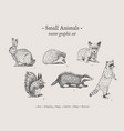 small animals vintage set vector image