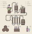 wine making process or winemaking infographic vector image