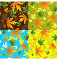 seamless leaves vector image