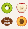 Fruits design vector image