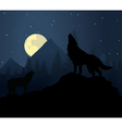 Night wolf vector image