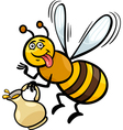 honey bee insect cartoon vector image