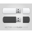 An isolated USB pen drive vector image