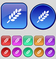 Wheat Ears Icon sign A set of twelve vintage vector image