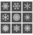 Set of beautiful paper snowflakes vector image