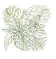 sketch composition with tropical leaves vector image